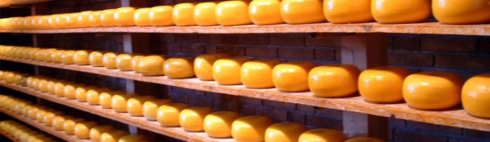 Sector lechero: Menos exportaciones en el 1º semestre de 2013