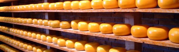 Lechería: caída de las exportaciones lácteas