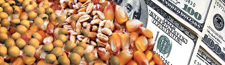 Agrodólares: Posibles exportaciones antes de febrero de 2016